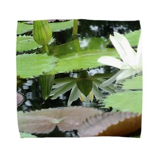 モネの庭 ハス 鏡 Towel handkerchiefs