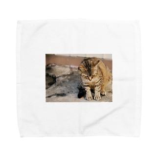 猫ちゃんの休日 Towel handkerchiefs