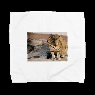 Sayuの猫ちゃんの休日 Towel handkerchiefs