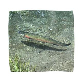 綺麗な水に住むニジマス Towel handkerchiefs