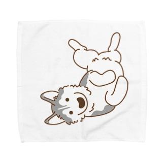 ヘソ天1 Towel handkerchiefs