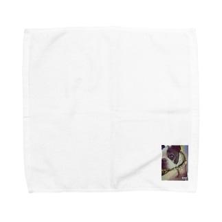 ボストンテリア Towel handkerchiefs