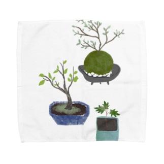 ボタニカル 鉢植えと苔玉 タオルハンカチ