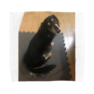 マロさん Towel handkerchiefs