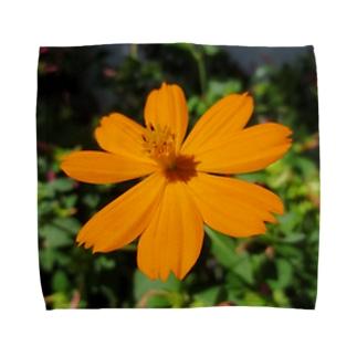 オレンジの勧め Towel handkerchiefs