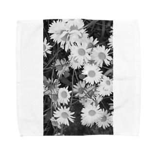 masato 4 Towel handkerchiefs