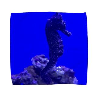 Seahorse  〜タツノオトシゴ〜 Towel handkerchiefs