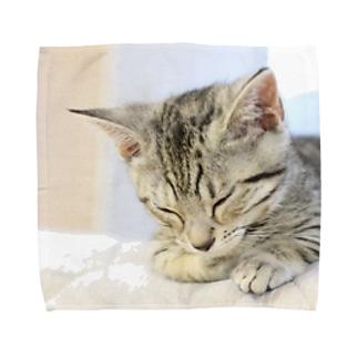 おひるね子猫(マンチカン) タオルハンカチ