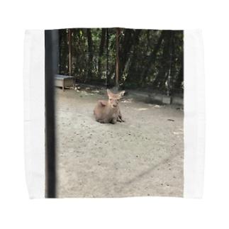 #deer Towel handkerchiefs