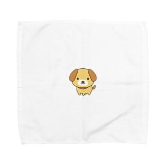 チワワ兄ちゃん   Towel handkerchiefs