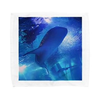 Whale shark Towel handkerchiefs