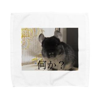 何か? Towel handkerchiefs