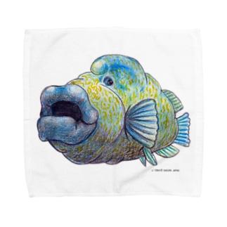 ナポレオンフィッシュ Towel handkerchiefs