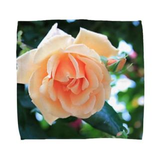 優しい薔薇 Towel handkerchiefs