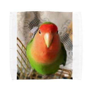 JADEのインコ界の用心棒、ジェイド之介 Towel handkerchiefs