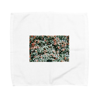 aka. Towel handkerchiefs