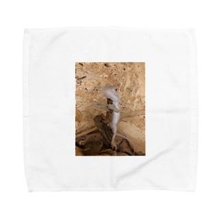 白澤さん Towel handkerchiefs