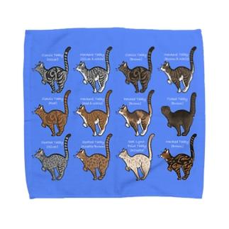 Tabbies Cat(集合) Towel handkerchiefs