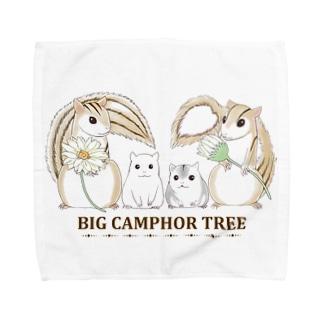 BIG CAMPHOR TREEタオルハンカチ Towel handkerchiefs