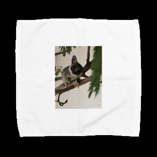 Avril_BushbabyのAvril 携帯ケース Towel handkerchiefs
