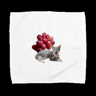 保護猫カフェ「駒猫」さん家のNo.3 ぶどうくん♪ Towel handkerchiefs