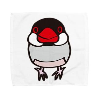 ノーマル文鳥 タオルハンカチ