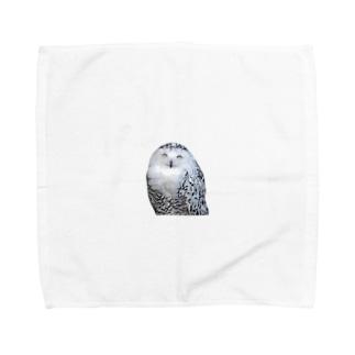 梟 Towel handkerchiefs