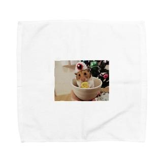 きゃわたん Towel handkerchiefs