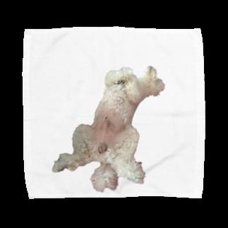 のぶゆきのdoggy0008 Towel handkerchiefs