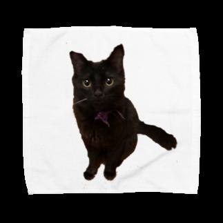 ねこまちランドのおすわりレオン2 Towel handkerchiefs