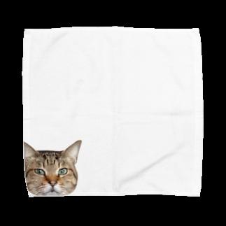 maaaaaimuのhana❷ Towel handkerchiefs