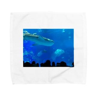 ジンベイザメの写真 Towel handkerchiefs
