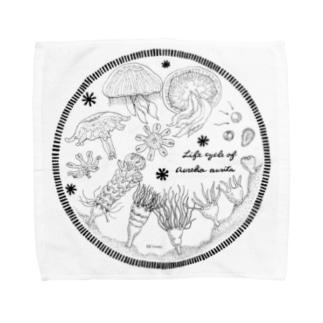 Hi*roomのミズクラゲの生活史 Towel handkerchiefs