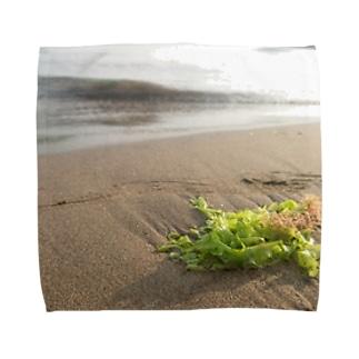 浜辺に打ち上げられた海藻 Towel handkerchiefs