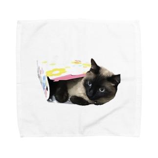 箱入りネコ Towel handkerchiefs