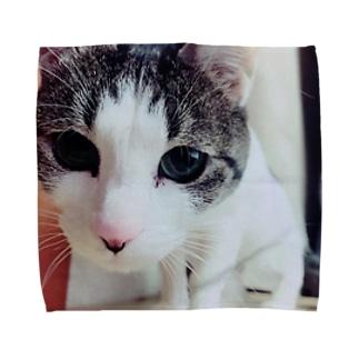 まるさん Towel handkerchiefs