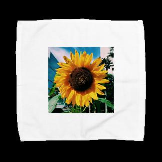 Shogo Hirokiのひまわり Towel handkerchiefs