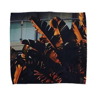 palm Towel handkerchiefs