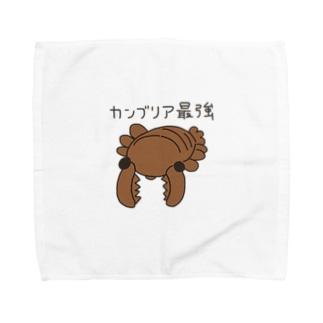 カンブリア最強生物 アノマロカリス Towel handkerchiefs