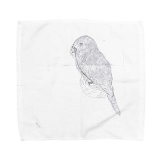 小4ちゃんのインコ Towel handkerchiefs