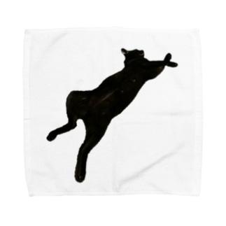 うちの猫:名前はボス、呼び方はけっけ Towel handkerchiefs