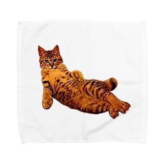 Elegant Cat Towel handkerchiefs