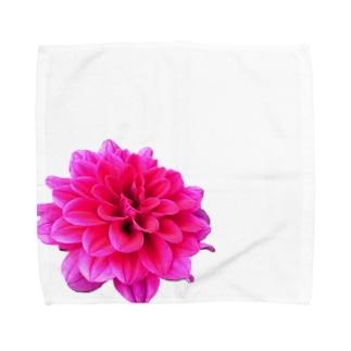 Daria-P Towel handkerchiefs