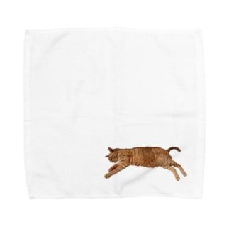 ぐーたらTa-nan Towel handkerchiefs