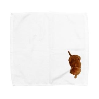 ツチノコ風Ta-nan Towel handkerchiefs