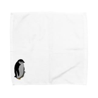 ぼっちのアゴヒゲペンギン Towel handkerchiefs