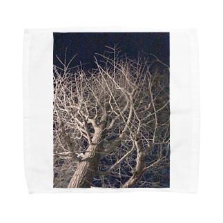 夜の木 枝ぴんぴん ウッドナイト Towel handkerchiefs