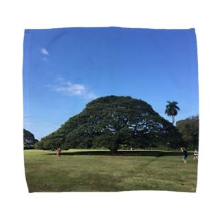 ハワイ モンキーポッド Towel handkerchiefs
