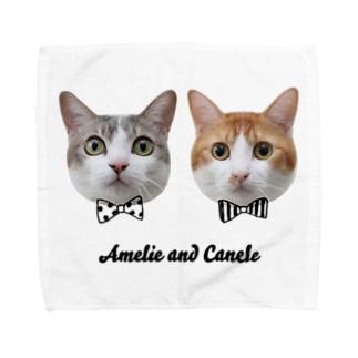 Twins Cats Amelie and Canele Towel handkerchiefs