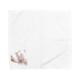 ベビーシロポンシリーズ Towel handkerchiefs
